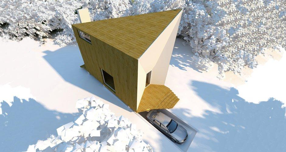 дом охотника, проект